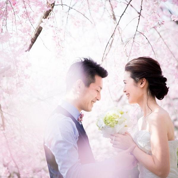 桜の洋装ロケーションフォト