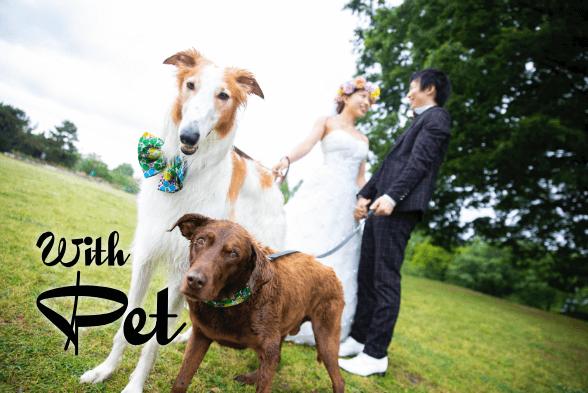 ペットと公園で撮った結婚写真