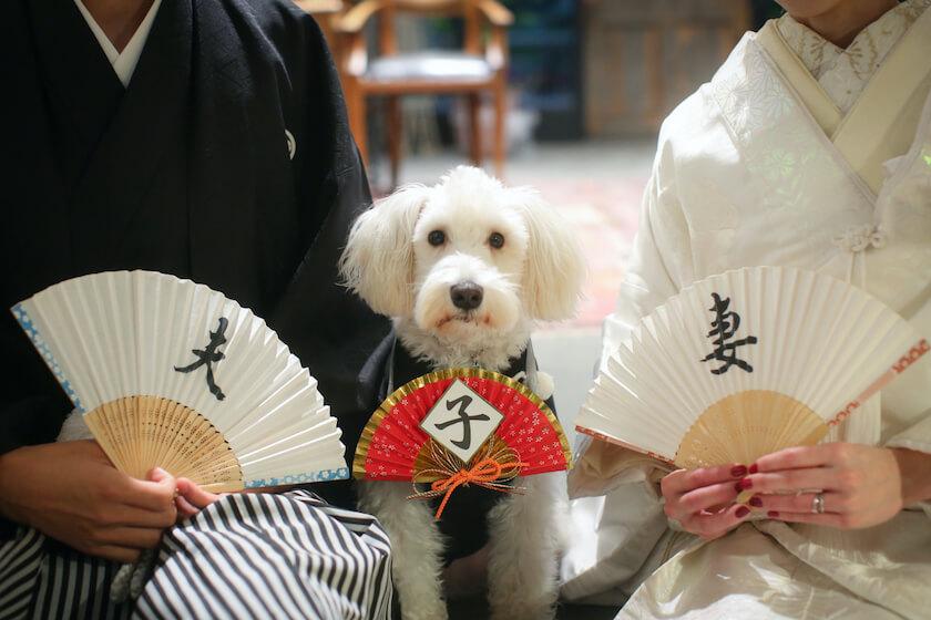 和装姿の新郎新婦の真ん中にいるペット用の和服を着た犬