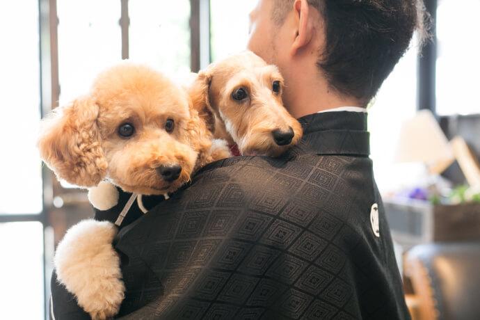 二匹の犬を和装を着て抱っこしている新郎