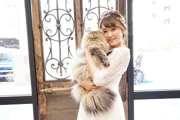 猫と一緒に前撮りしている花嫁さん