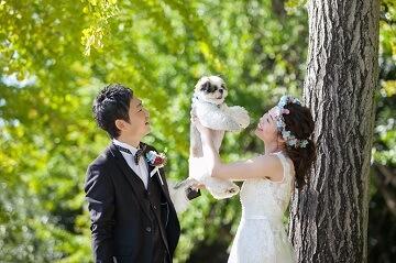 ウェディングドレスを着た新婦さんが愛犬を高い高いのポーズ