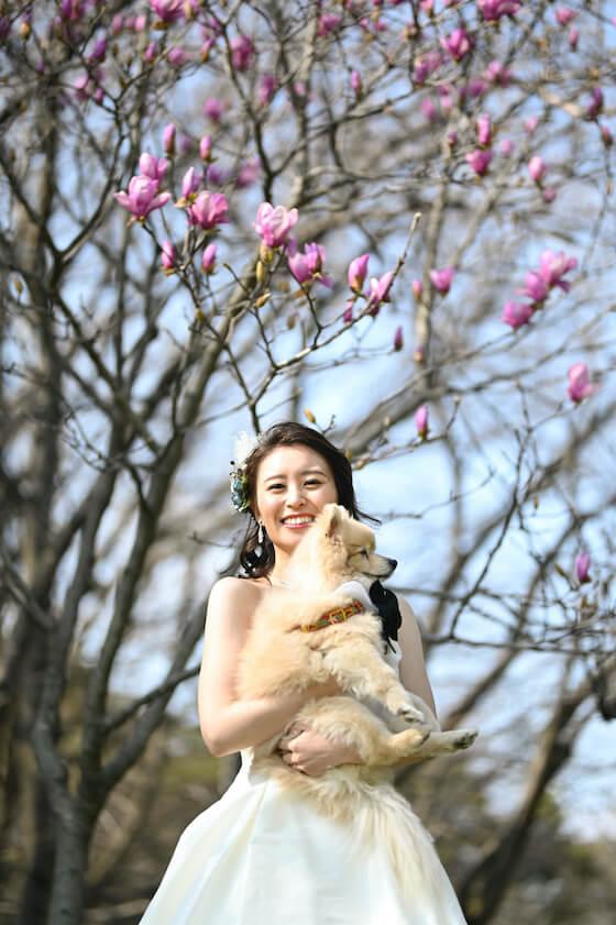 公園でペットの犬と一緒にウェディングを着ている花嫁