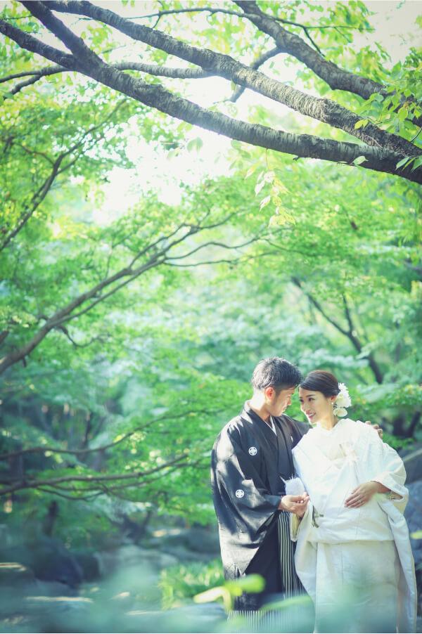 白無垢と紋服を着て緑のきれいな公園で前撮りしている二人