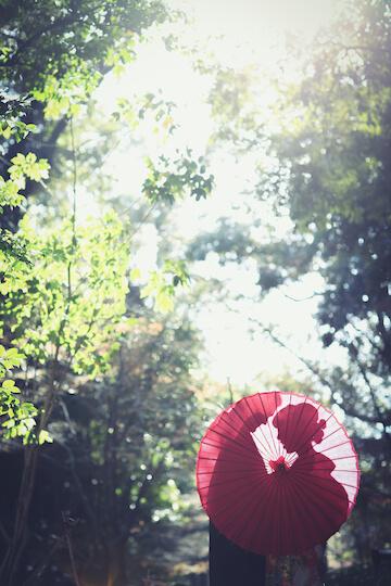 赤の和傘に写る二人のシルエット