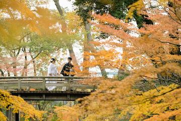 黄色く色づいた紅葉と橋を渡る新郎新婦
