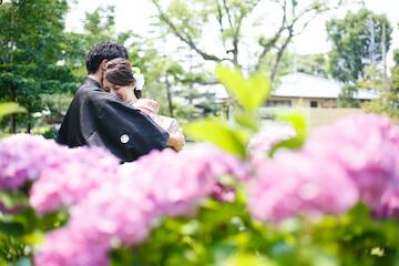 ハグしている和装を着た二人とピンクの紫陽花