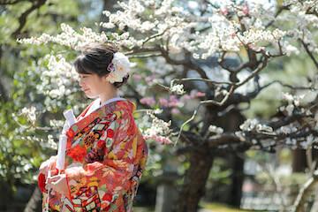 赤の色打掛を着て桜前撮り(コンビネーション)
