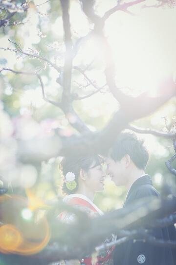 桜と和装を着た新郎新婦
