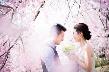 桜のきれいなロケーションで満面の笑顔のふたり